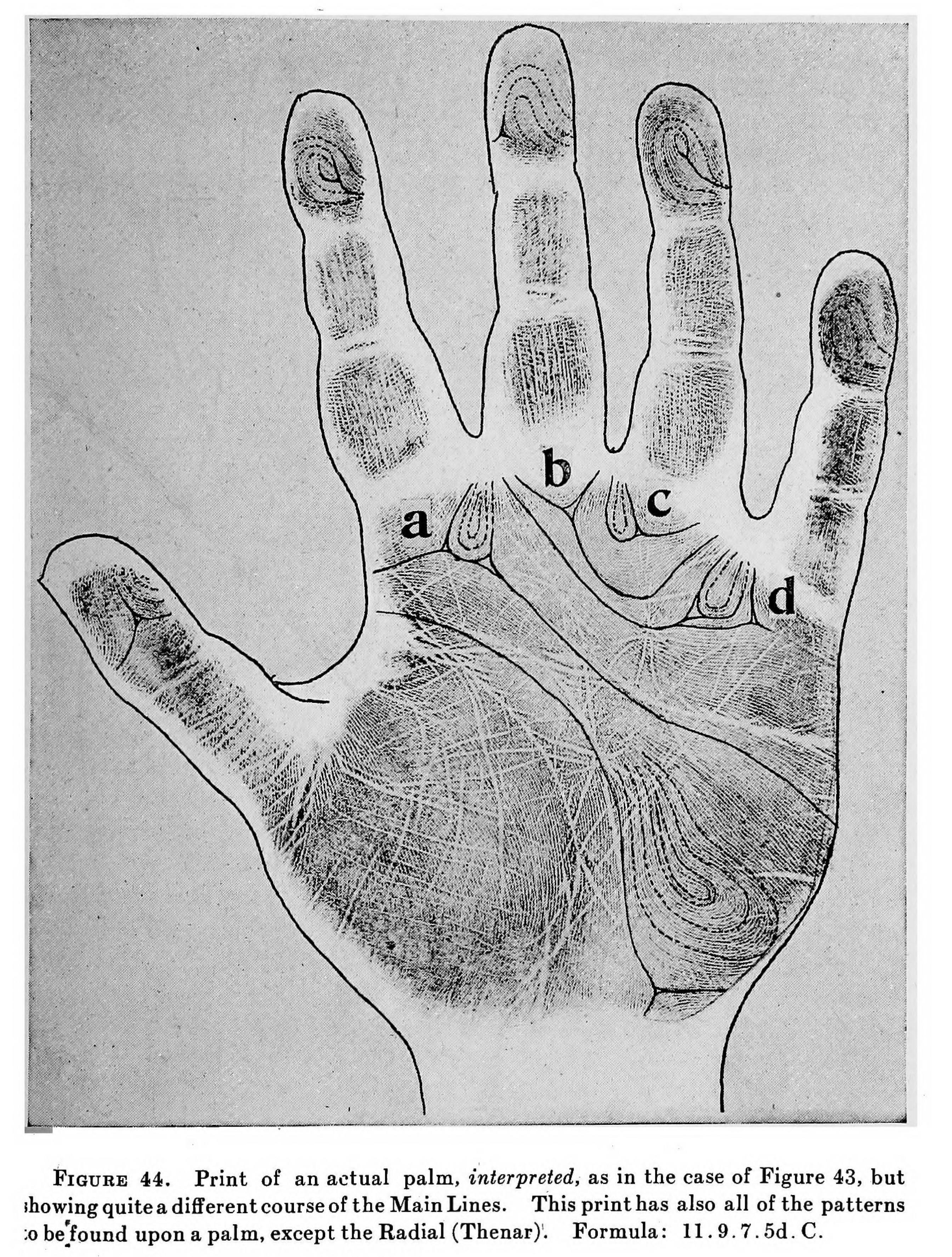 Fingerprints And Science Fingerprinting In The Modern World