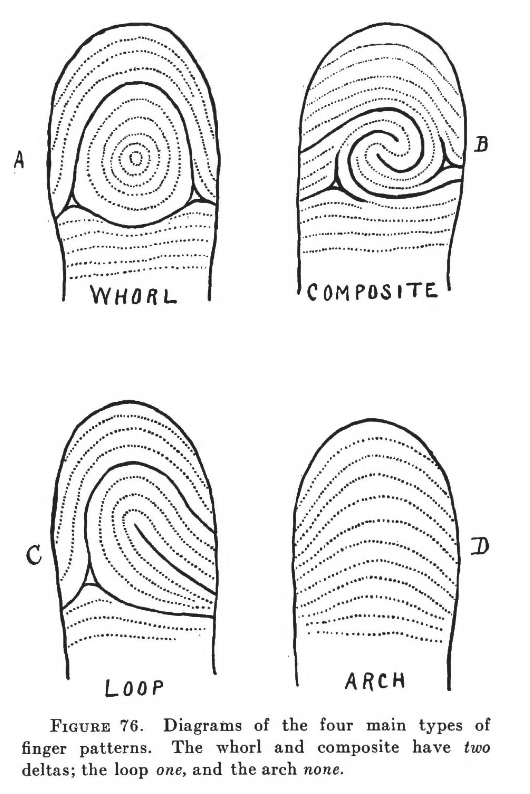 No Two Finger Prints Are Alike Fingerprinting In The Modern World