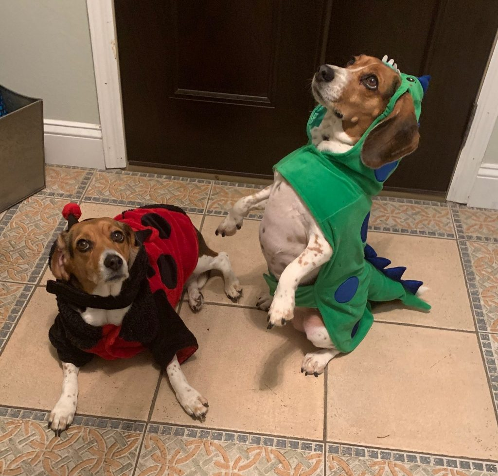Marlo and Marigold in Dino Costumes