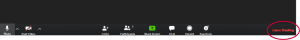 The Zoom toolbar at the bottom of the Zoom window. The