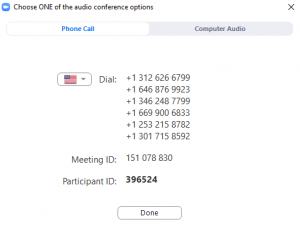 The information required to join a meeting via phone. please note that the numbers you see may be entirely different for each meeting.